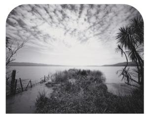 Point, Western Lake Wairarapa 2008
