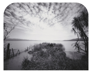 Point, Western Lake Wairarapa 2008