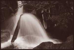 Waiatiu Falls, Whirinaki 2013